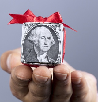 Taking off the wrapper: The Hidden Dynamic of Variable Annuity Funds
