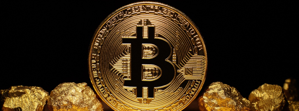 Portfolio Risk Management: Is Bitcoin the New Digital Gold?