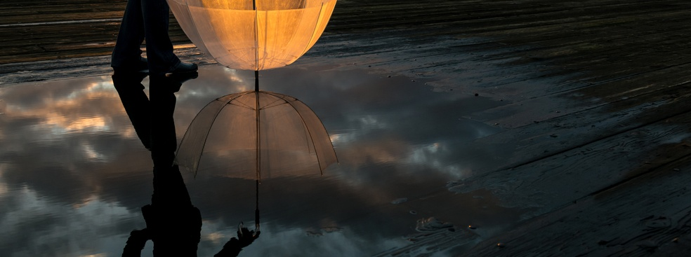 Of Mirrors and Echoes: How Narcissistic CEOs Build their Professional Worlds
